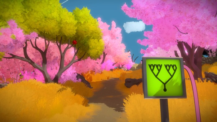 The Witness Environmental Cues