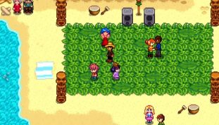 Stardew Valley All Festivals Guide