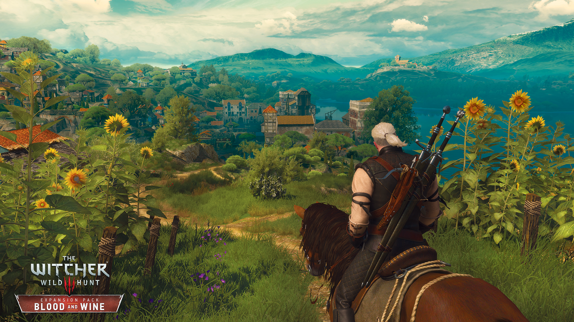 Witcher3BW1
