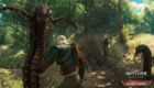 Witcher3BW5