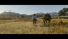 red-dead-redemption-2-trailer-mp4_000031331