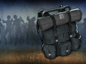 H1Z1: Just Survive Free DLC Features Alpaca Backpack, Fans Left Unimpressed
