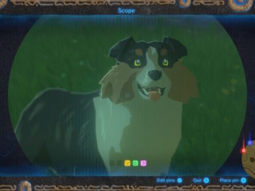 Breath of the Wild – How to Make Friends With Dogs & Get Rewards