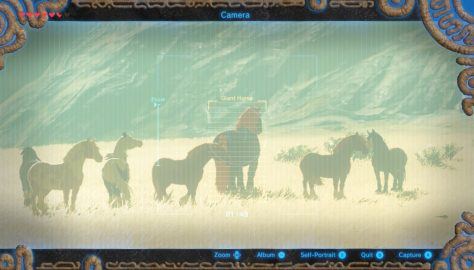 Breath of the Wild – Yes, There's A Giant Horse. Here's How To Get It