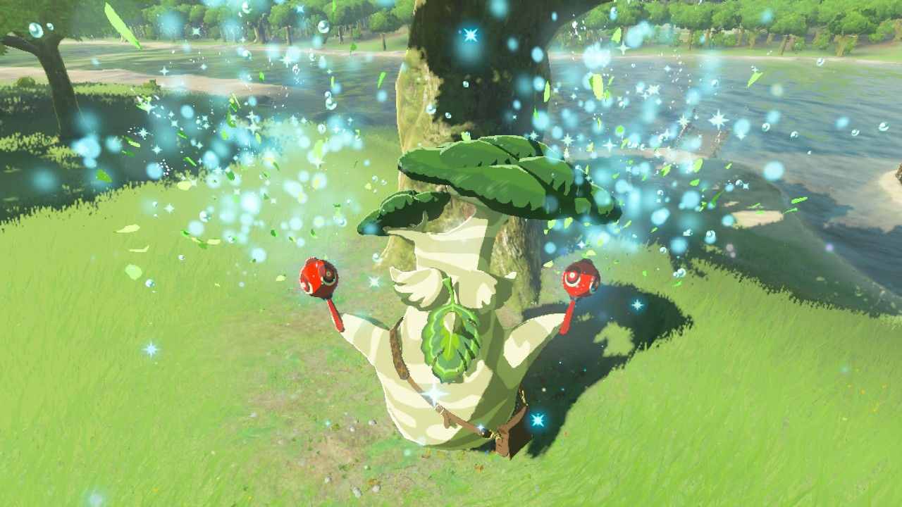 Breath of the Wild – All Hestu Locations | Item Slot Upgrades Guide
