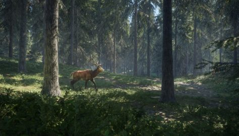 theHunter-Call-of-the-Wild-Features