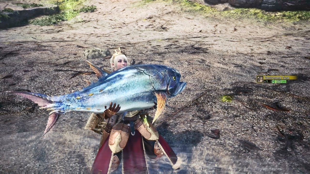 Monster hunter world how to fish 39 angling for a bite for Ps4 hunting and fishing games