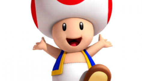 Toad_3D_Land