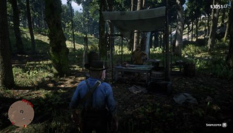 Red Dead Redemption 2_20181108120518