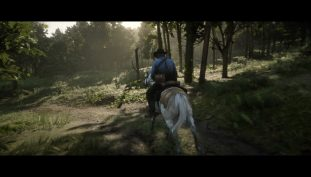 Red Dead Redemption 2: How To Find Every Horse In One Spot   Stable Trick Guide