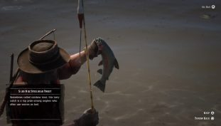 Red Dead Online: How To Fish In The Safety Of Your Camp | Safe Fishing Guide