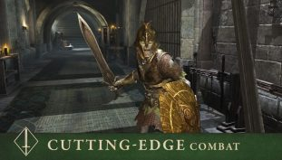 Elder Scrolls: Blades – How To Farm Wood, Stone, Gold & XP | Job Grinding Guide