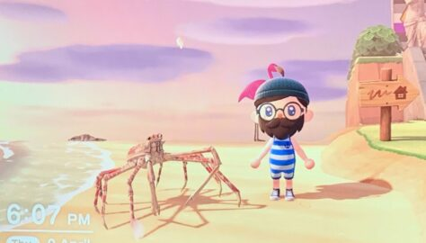 AnimalCrossingSpiderCrab